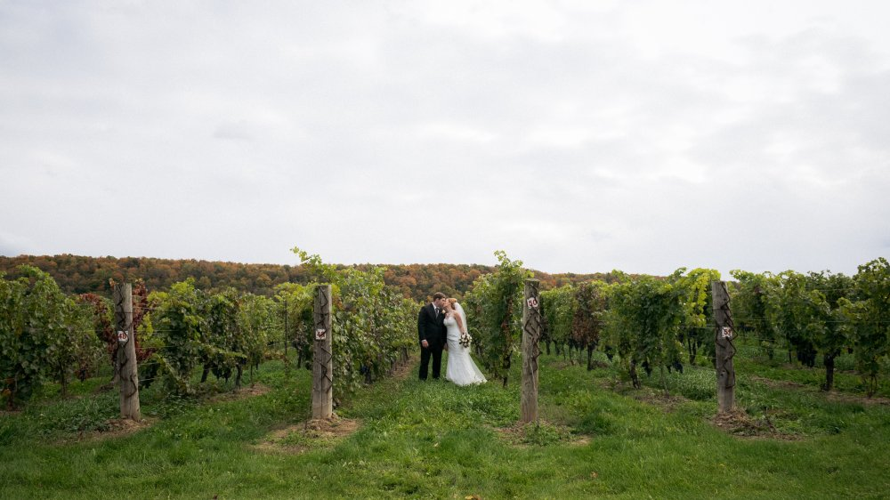 JF Hannigan Wedding Photography: Christine and Mark: fall down on the escarpment 69