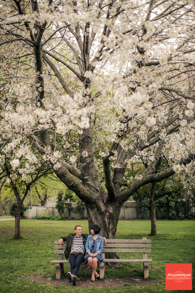 couple on bench below flowering tree