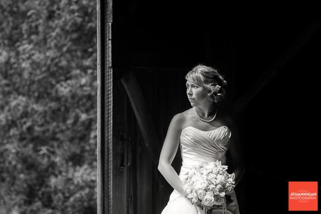 niagara, wedding, photography, joel, hannigan, balls falls, noir, bride