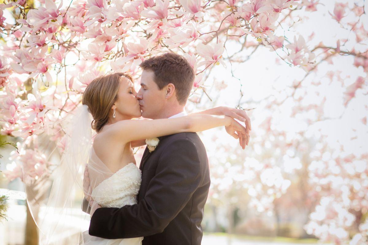 Wedding - Slider Images